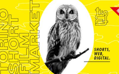 """Torino Short Film Market: agli sgoccioli """"Digita!"""", la call per webserie e narrazioni digitali"""